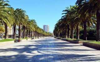 Расстояние от Барселоны до Салоу: сколько км и времени ехать на машине или на автобусе