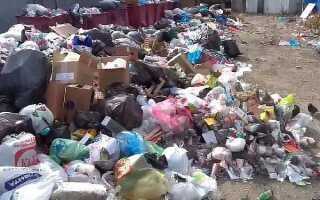 Расстояние от мусорных контейнеров до жилого дома: нормы СанПиН и СНиП