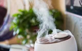 Какая влажность воздуха должна быть в квартире: оптимальная норма в помещении
