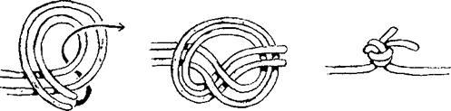 Дубовый узел