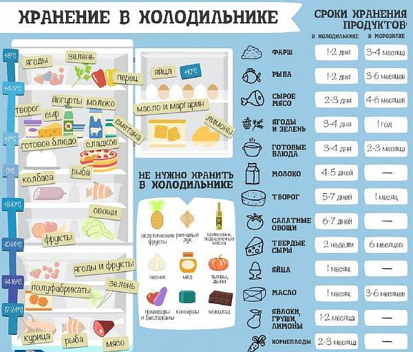 Хранение пищи в домашних условиях